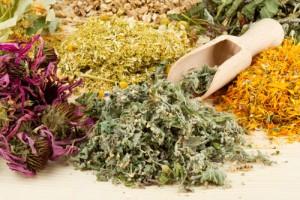 Các bài thuốc trị tàn nhang bằng thảo dược HỮU HIỆU NHẤT