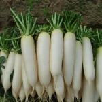 Thực hư thực phẩm siêu rẻ bán khắp chợ có thể trị khỏi tàn nhang